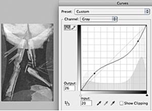 "Mel Strawn's ""Curves"" graph-2"