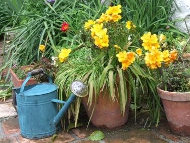 Maureen Garden Granada