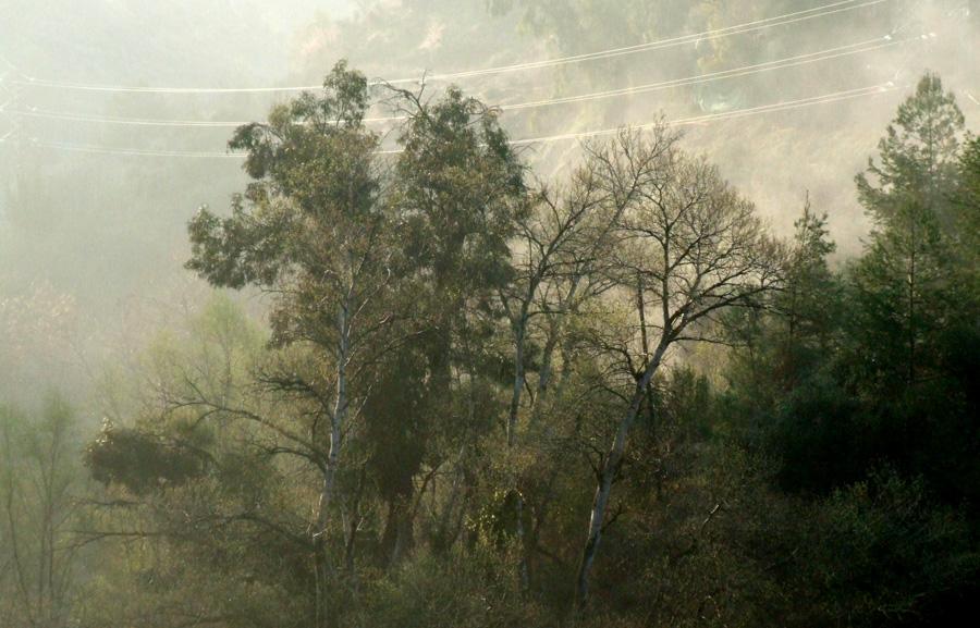 Genil Valley Granada